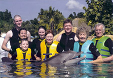 swim-with-dolphins-orlando-florida