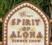 disneys-spirit-of-aloha-dinner-show-seaworld-orlando