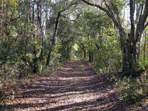 hal-scott-preserve-florida