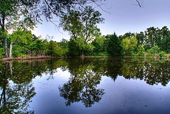 lake-orlando-florida