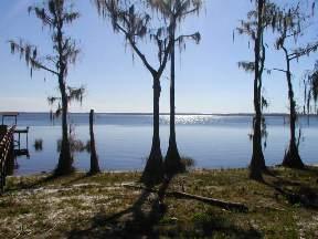 lake-louisa-state-park-orlando